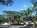 Pantabangan,NuevaEcijajf0301 07.JPG