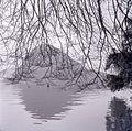 Paolo Monti - Serie fotografica (Lugano, 1960) - BEIC 6361502.jpg