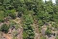 Parque Gatineau (9809947054).jpg
