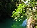 Parque Natural Sierra de Cazorla Río Guadalquivir en la Cerrada del Utrero.JPG