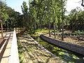 Parque Verde do Bonito - Ponte - Ribeiro.jpg