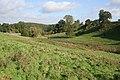 Pasture near Branston - geograph.org.uk - 998151.jpg