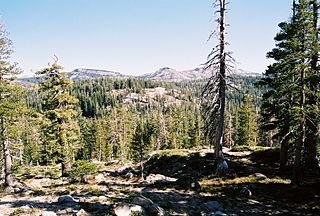 Sierra Nevada subalpine zone