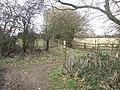 Path junction, Ashotts Lane - geograph.org.uk - 1185482.jpg
