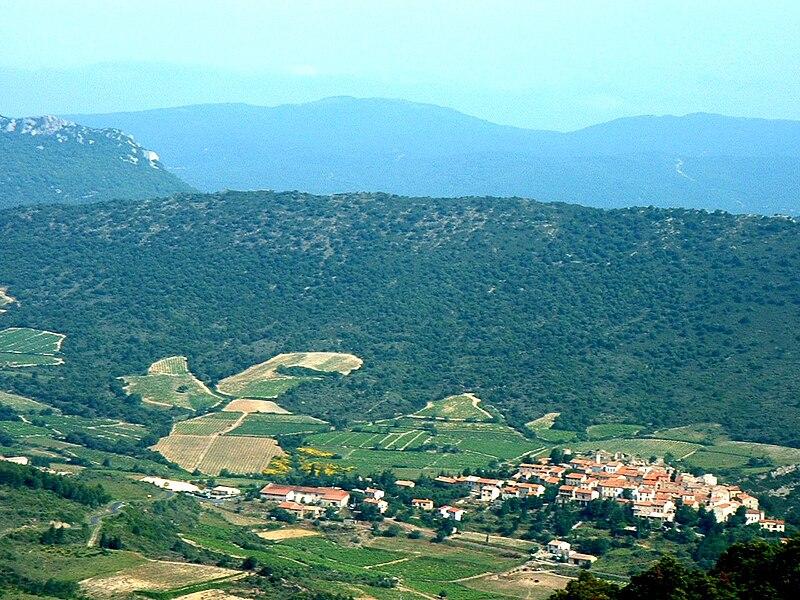 La photographie couleur présente une vue aérienne d'un vallon des Corbières. Le village est au fond, entouré de vignes sur les coteaux les moins pentus. Le sommet est boisé. En arrière-plan, le mont Tauch se devine en silhouette bleutée.