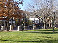 Pearl Street Mall from courthouse lawn.JPG