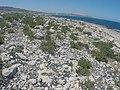Pembroke, Malta - panoramio (37).jpg