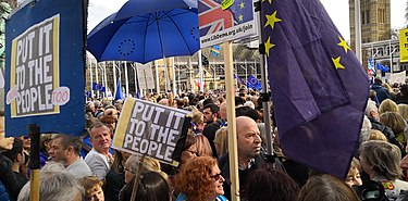 People's Vote March at Parliament Square .jpg
