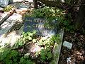 Petko Staynov's Grave.JPG