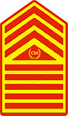 Philippine Marine Corps Chief Master Sergeant Rank Insignia - Designated as Command Sergeant Major.jpg