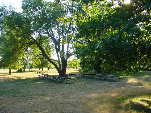 File Picnic Tables Under Trees Near Main Parking Lot At