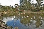 Picton Botanic Gardens