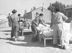 PikiWiki Israel 165 A Cleaning Day at Merchavia מאווררים מיטות.jpg