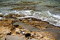 PikiWiki Israel 41502 Habonim Nature Reserve.jpg