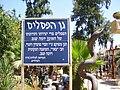PikiWiki Israel 5418 yoma segev sculpture garden.jpg