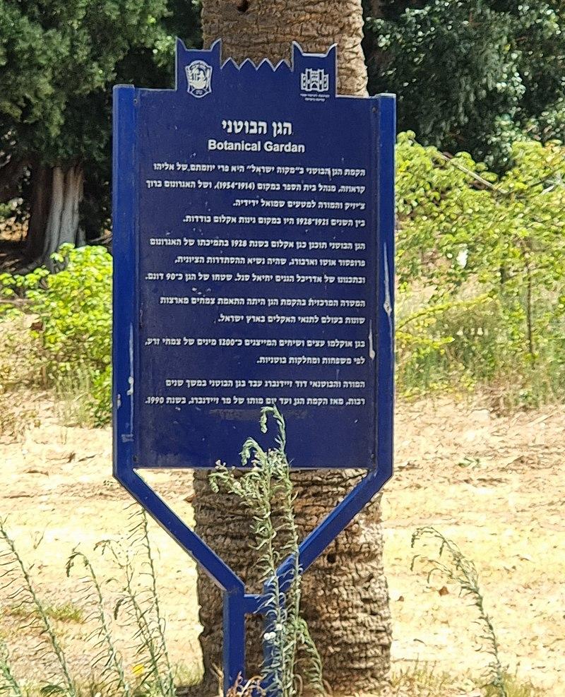 מתחם מקוה ישראל