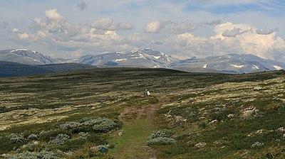 Gamla vandringsleden till Trondheim över fjällen, vid Dovre