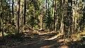 Pionki, Poland - panoramio (2).jpg