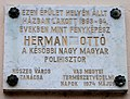 Plaque of Ottó Herman, Kőszeg, 2016-03-07.jpg