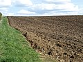 Ploughed Field - geograph.org.uk - 1247127.jpg