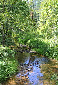 Plum Creek looking downstream.JPG
