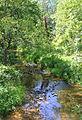 Plum Creek looking downstream.JPG