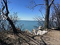 Point Pelee National Park looking out at Lake Erie.jpg