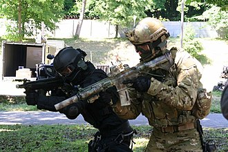 Heckler & Koch HK416 - A suppressed D10RS in service with Polish GROM commandos at a media demonstration in May 2011
