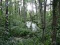 Poland. Sierpc. Open air museum, (Skansen) 020.jpg