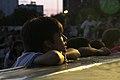 Polo Circo en Verano en la Ciudad (6762380269).jpg