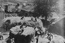 Scène de dépiquage dans une cour de château en 1932 ( pomayrols