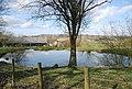 Pond, New Pattenden Farm - geograph.org.uk - 1766961.jpg