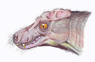 Scylacosauria - Life restoration of Porosteognathus efremovi