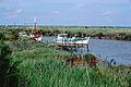 Port ostréicole de Chaillevette (3).jpg
