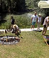 Preparation of smoked carp at the Carp Day Festival in Plavnica, Montenegro 01.jpg