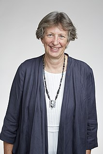 Katharine Cashman Professor of Volcanology at the University of Bristol