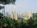 Properties in Quarry Bay viewed from Mount Parker Road.jpg