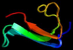 Proteino MDK PDB 1mkc.png