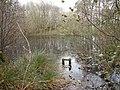 Puddock Pond in November - geograph.org.uk - 81086.jpg