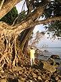 Pulau Tiga Shore.jpg