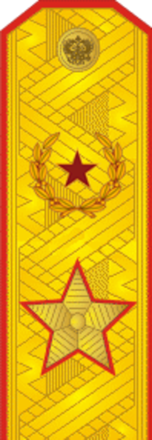 Army ranks and insignia of the Russian Federation - Image: RAF A F9Gen Army since 2013par