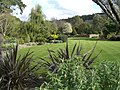 RHS Rosemoor - panoramio - PJMarriott.jpg