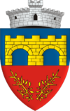 Coat of arms of Chichiș