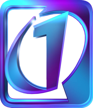 RTP1 - Image: RTP1 logo 2002