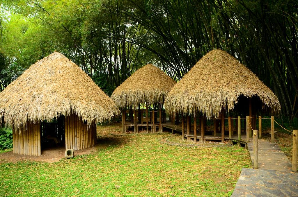Recorrido Culturas Indígenas Zona 2.jpg