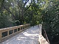 Recreational foot bridge over the Rouge River.jpg