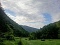 Red Wall National park 6.jpg
