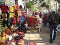 Religious Ox - Gangasagar Fair Transit Camp - Kolkata 2012-01-14 0779.JPG