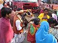 Religious Ox - Gangasagar Fair Transit Camp - Kolkata 2012-01-14 0790.JPG
