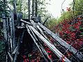 Remains of water tank at Pooley Creek, Yukon (10752680594).jpg